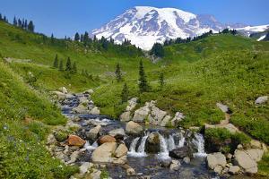 USA, Washington State, Mount Rainier National Park. Mount Rainier and Edith Creek cascade. by Jaynes Gallery