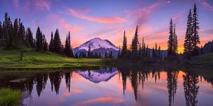 USA, Washington State, Mt. Rainier National Park. Tipsoo Lake panoramic at sunset. by Jaynes Gallery