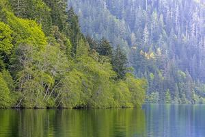 USA, Washington State, Olympic National Park. Lake Crescent landscape. by Jaynes Gallery