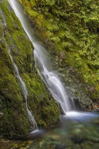 USA, Washington State, Olympic NP. Madison Falls and pool. by Jaynes Gallery