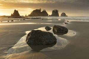 USA, Washington State, Olympic NP. Sunrise on coast beach and rocks. by Jaynes Gallery