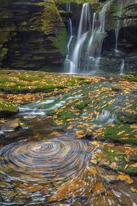 USA, West Virginia, Blackwater Falls State Park. Waterfall and whirlpool scenic. by Jaynes Gallery