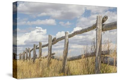 Utah, Manti-La Sal National Forest. Old Wooden Fence by Jaynes Gallery