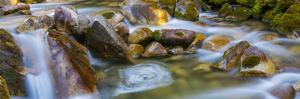 Utah, Wasatch Cache National Forest. Scenic of Little Cottonwood Creek by Jaynes Gallery