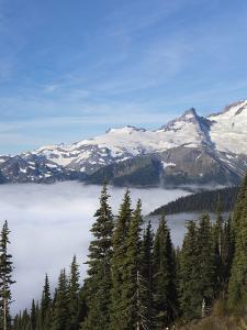Washington, Mount Rainier National Park. Landscape from Sunrise Point by Jaynes Gallery