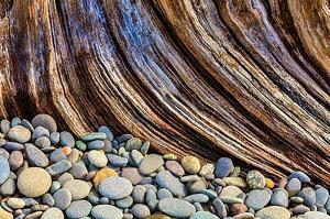 Washington State, Olympic National Park. Beach Rocks and Driftwood by Jaynes Gallery
