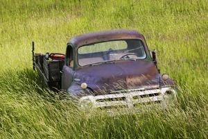 Washington State, Palouse. Vintage Studebaker Pickup Truck in Field by Jaynes Gallery