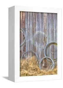 Wire Coiled on Barn Wall, Petersen Farm, Silverdale, Washington, USA by Jaynes Gallery