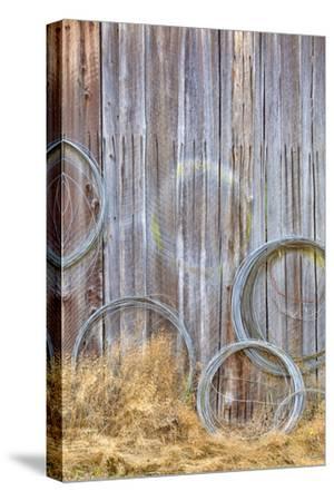 Wire Coiled on Barn Wall, Petersen Farm, Silverdale, Washington, USA