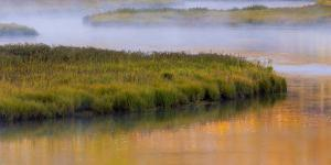 Wyoming, Yellowstone National Park. Morning on the Madison River by Jaynes Gallery