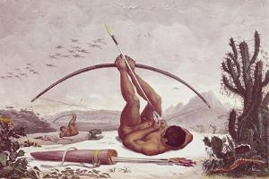 Cabocle a Civilized Indian Shooting a Bow by Jean Baptiste Debret