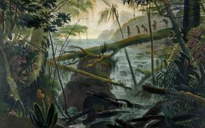 Indians Using a Fallen Tree-Trunk to Cross the Rio Paraiba Do Sul by Jean Baptiste Debret