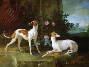 Misse and Turlu, Two Greyhounds of Louis XV by Jean-Baptiste Oudry