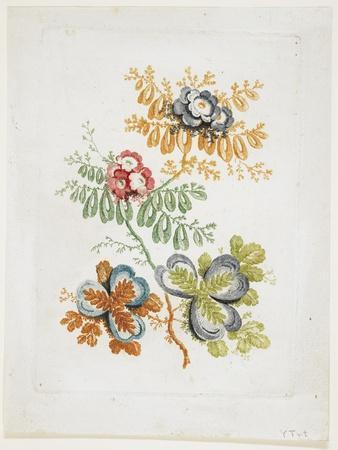 Bouquet De Fantaisie, from Nouvelle Suitte De Cahiers De Fleurs Ideales, Late 18th Century