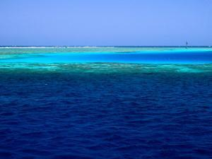 Abu Nuhas (Ships' Graveyard) Dive Site in Red Sea, Egypt by Jean-Bernard Carillet