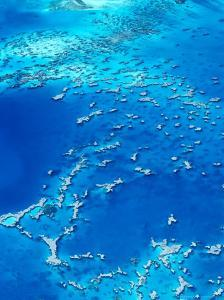 Aerial View of Lagoon South, New Caledonia by Jean-Bernard Carillet