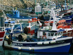 Fishing Boats Docked in the Harbour, La Turballe, Pays De La Loire, France by Jean-Bernard Carillet