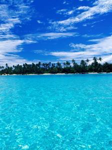 Motu (Islet) in Lagoon, French Polynesia by Jean-Bernard Carillet