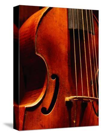 Stringed Instrument in Museum, Brussels, Belgium