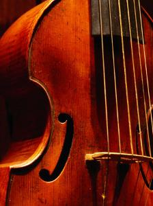 Stringed Instrument in Museum, Brussels, Belgium by Jean-Bernard Carillet