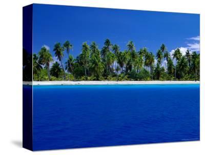 Tropical Splendour of Fakarava Atoll