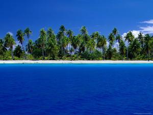Tropical Splendour of Fakarava Atoll by Jean-Bernard Carillet