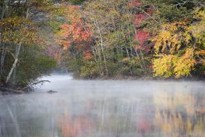 Morning mist and fall colours, River Pemigewasset, New Hampshire, New England, USA, North America by Jean Brooks