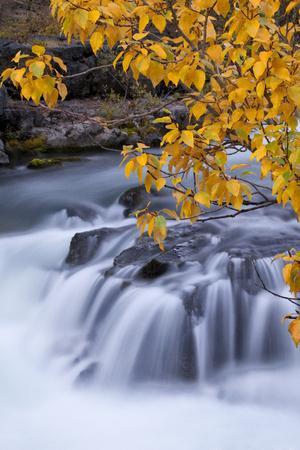 USA, Oregon. Rogue River Waterfalls in Autumn