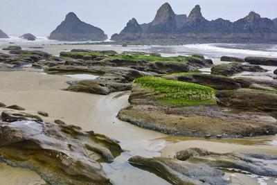 USA, Oregon, Seal Rock State Park. Rocky Beach at Low Tide