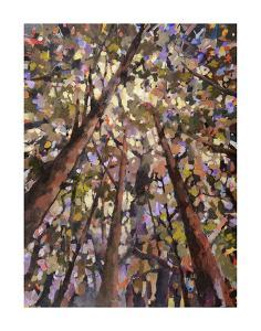 Looking Up Through Trees by Jean Cauthen