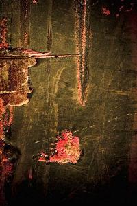 Rust in Red and Green I by Jean-Fran?ois Dupuis