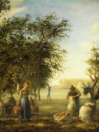 Apple Harvest by Jean-Fran?ois Millet