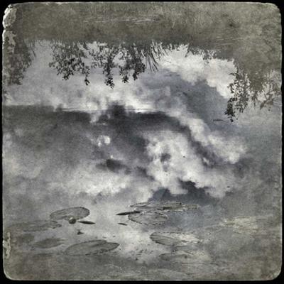 Zen Pond 1 by Jean-François Dupuis