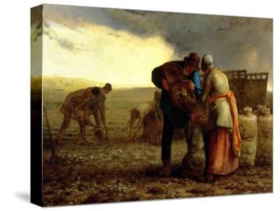 The Potato Harvest, 1855