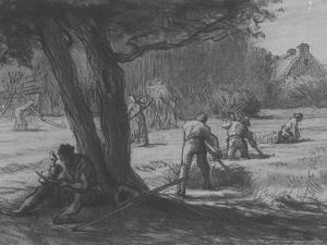 Untitled Print by Jean-François Millet