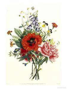 Bouquet of Foxglove, Poppy and Peonie by Jean Louis Prevost
