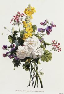 Bouquet of Mixed Flowers by Jean Louis Prevost