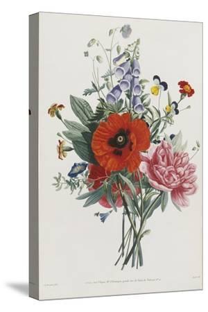 Collection Des Fleurs et Des Fruits, 1805