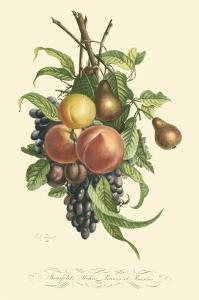 Plentiful Fruits I by Jean Louis Prevost