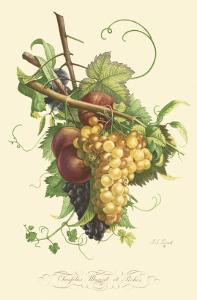 Plentiful Fruits II by Jean Louis Prevost