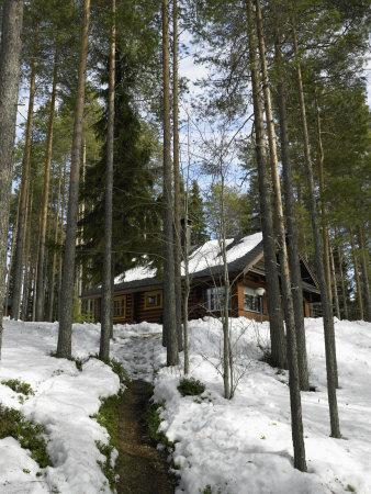 A Summer Holiday Cottage During the Spring Thaw, Kuihmo Province, Finland, Scandinavia
