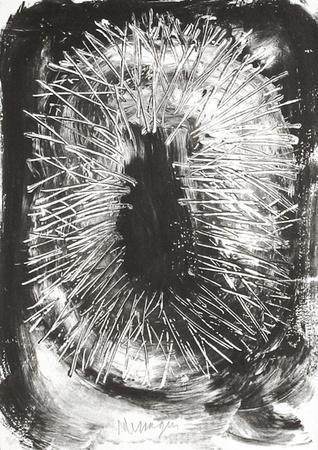 TR9401 - Couronné d'épines au printemps