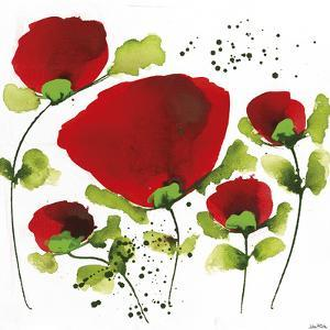 Poppy Passion I by Jean Picton