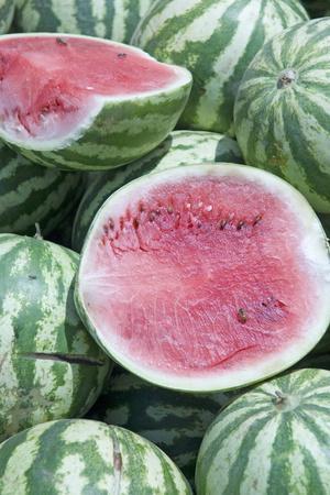 Watermelons, Ed Damer Village, Sudan, Africa