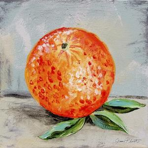 Abstract Kitchen Fruit 6 by Jean Plout