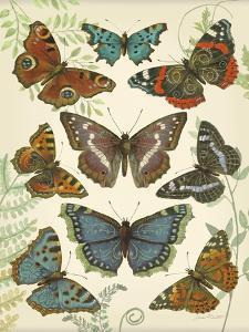 Butterfly Plate by Jean Plout