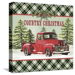 JP3674-Country Christmas by Jean Plout