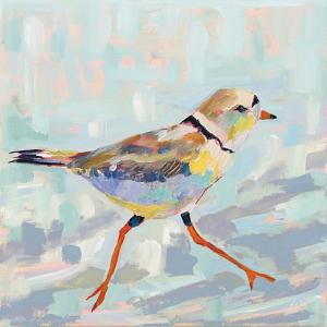 Coastal Plover I Neutral by Jeanette Vertentes