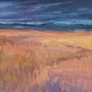 Deep Sky and Field by Jeannie Sellmer