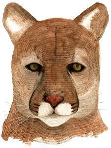 Cougar by Jeannine Saylor